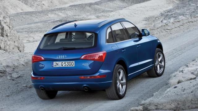 Audi Q5 неплохо показал себя на бездорожье